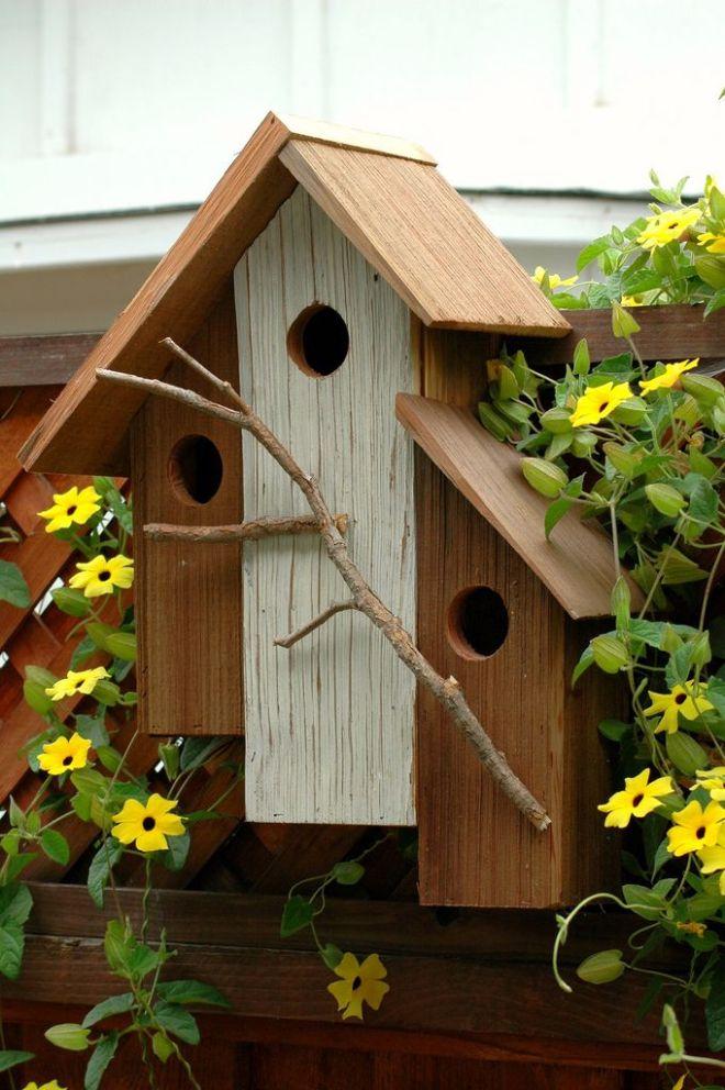 bird-house-12